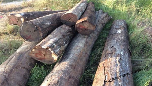 红檀木--板材原木_产品图片信息